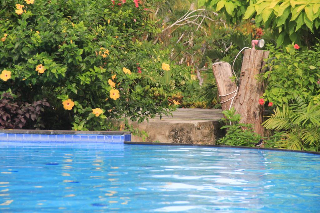 Aerotel Irian Pool