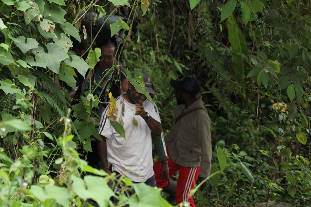 Hacking through the bush