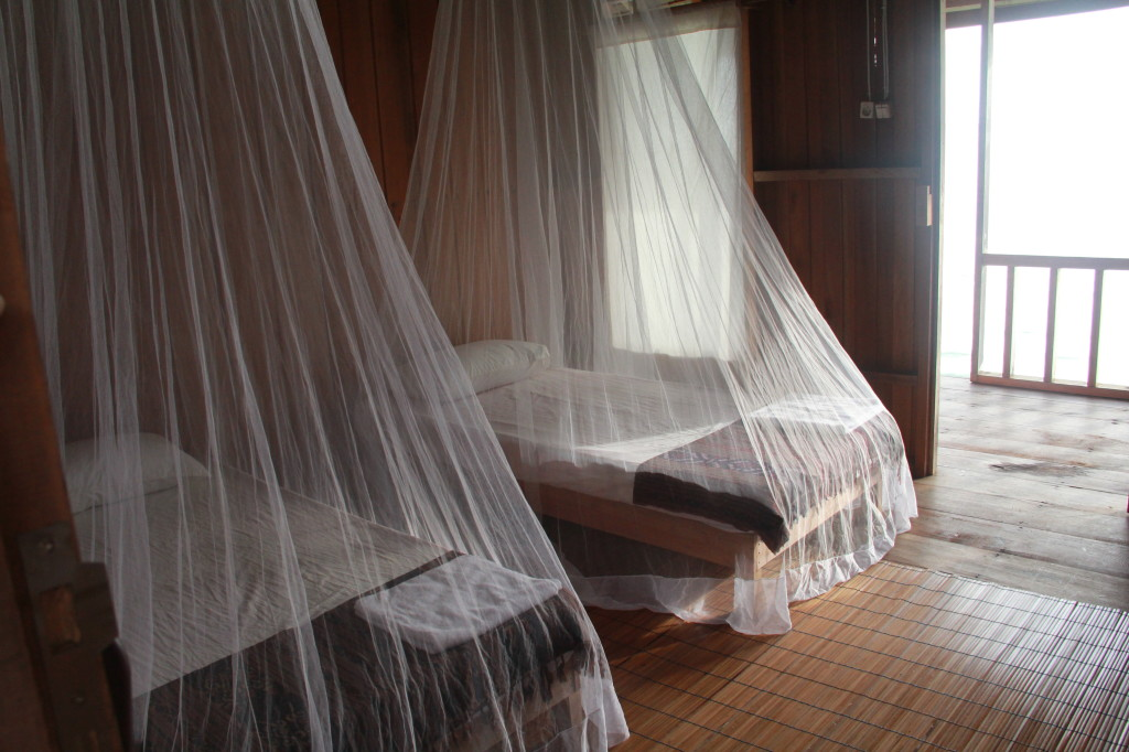 Beds have mosquito nets