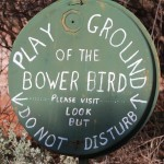 Nallan Station – Playground Of The Bowerbird