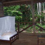 Rough Guide's 10 Best Jungle Lodges In The Amazon