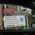 Blossom-Headed Parakeet Conservation Area Near Doi Inthanon