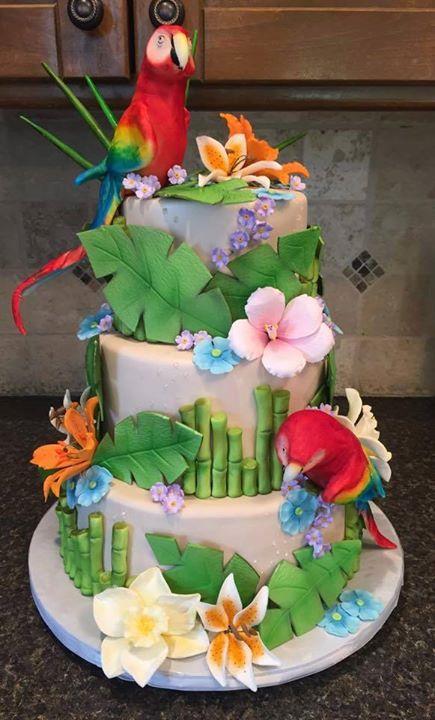 parrot-cake